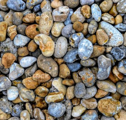 Flint / chert pebbles, made largely of silicon, abound in the clay soils of Surrey. This colourful selection displays a wide range of patterns and colours, chiefly brown / orange and blue-grey.
